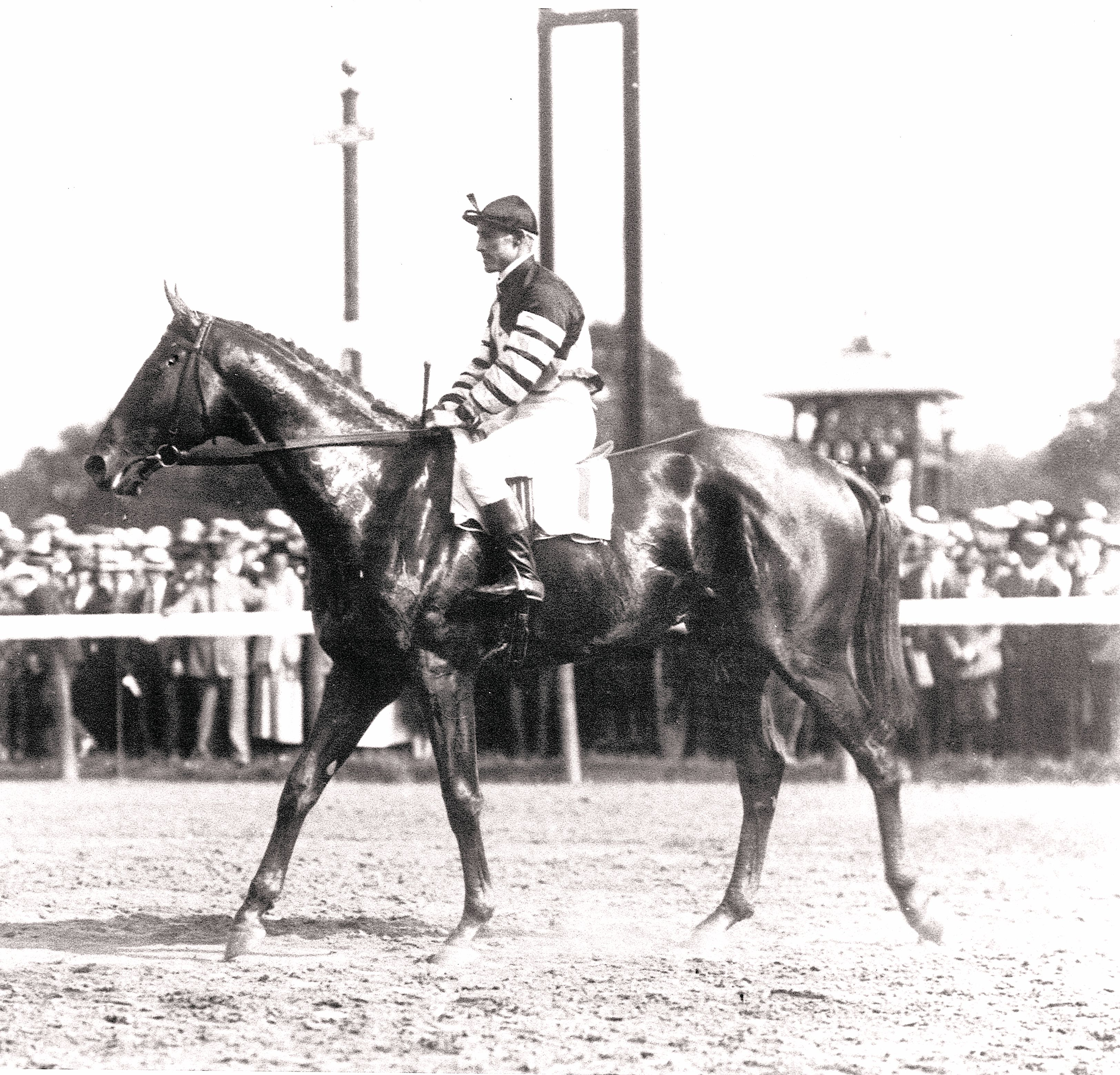 Man o' War (Andy Schuttinger up) at the 1920 Travers Stakes at Saratoga Race Course (Keeneland Library Cook Collection/Museum Collection)
