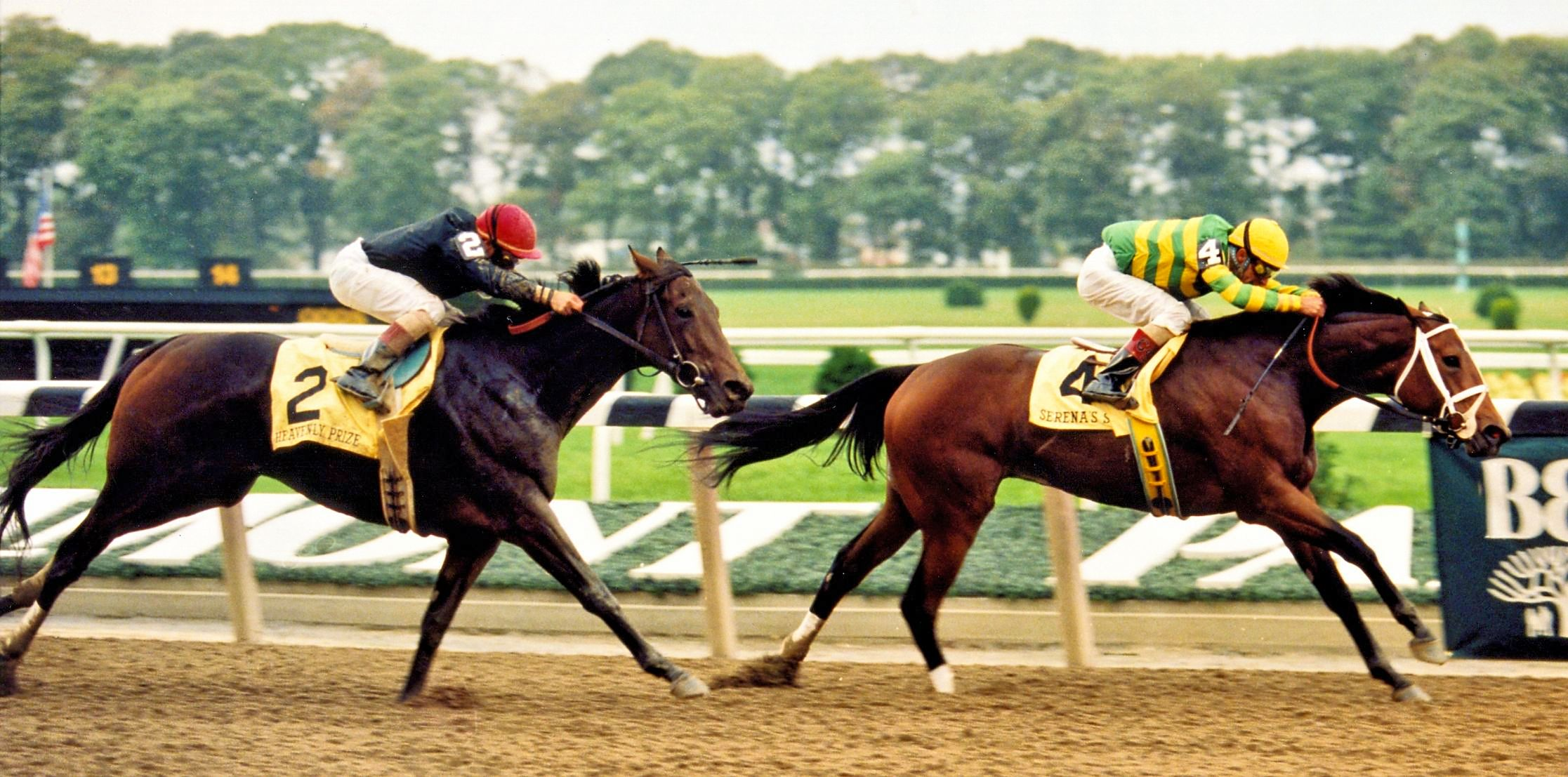 Serena's Song (Gary Stevens up) defeating Heavenly Prize in the 1995 Beldame at Belmont Park (Barbara D. Livingston/Museum Collection)
