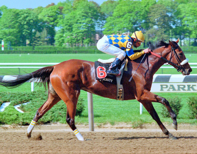 Sky Beauty (Mike Smith up) winning the 1993 Acorn at Belmont Park (NYRA)