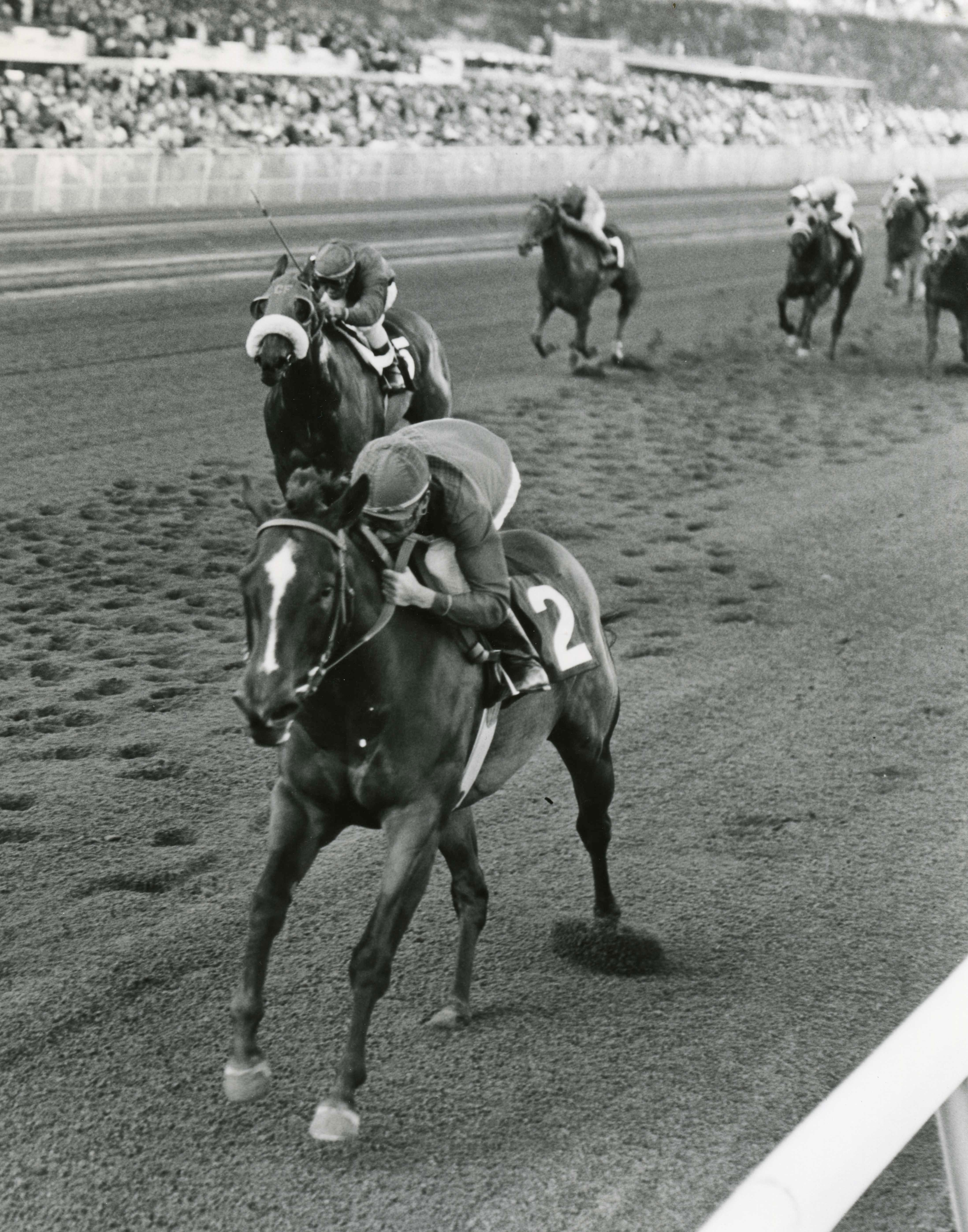 Ta Wee (John Rotz up) winning the 1969 Jasmine Stakes (Jim Raftery Turfotos/Museum Collection)