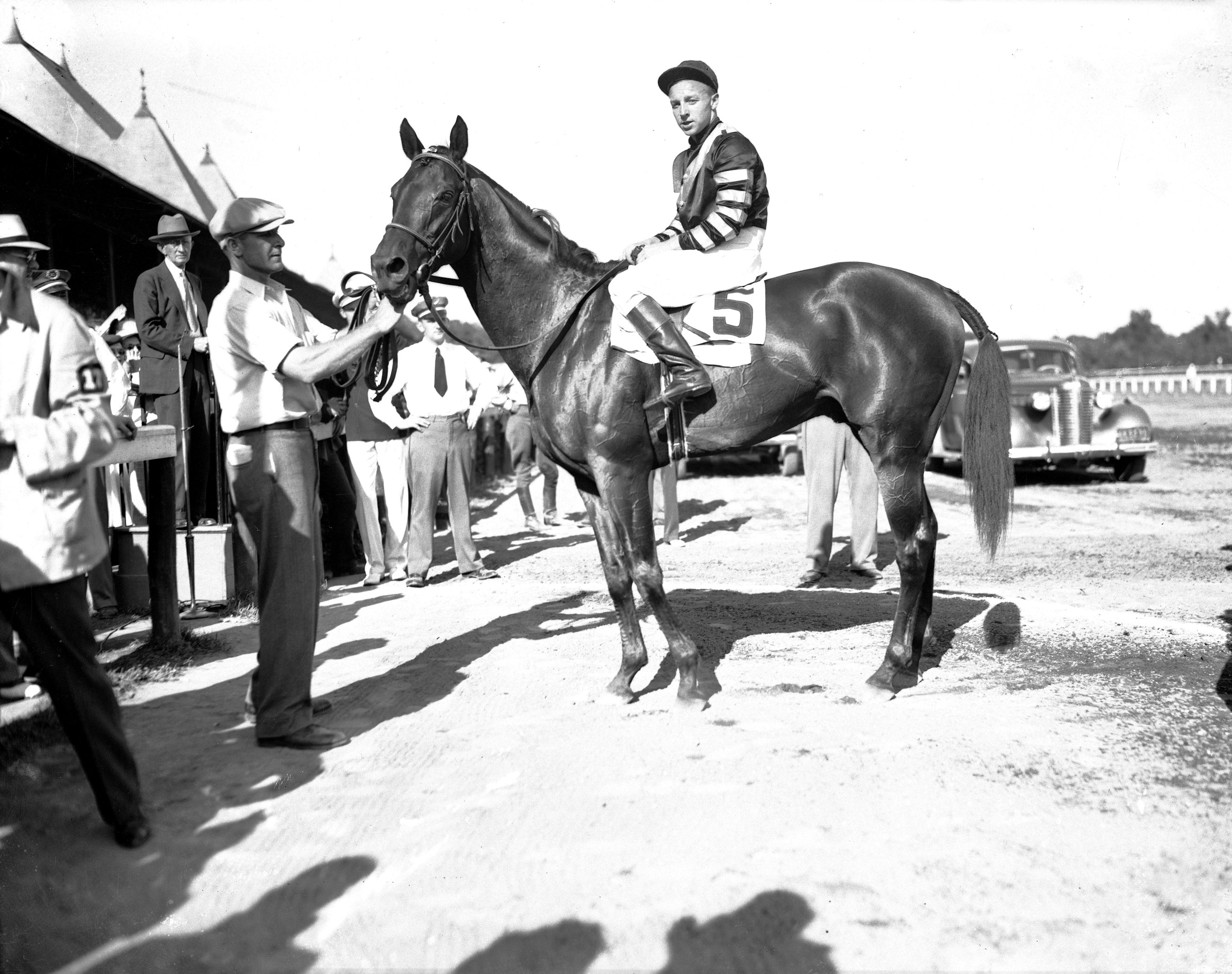 War Admiral with Wayne Wright up (Keeneland Library Cook Collection)