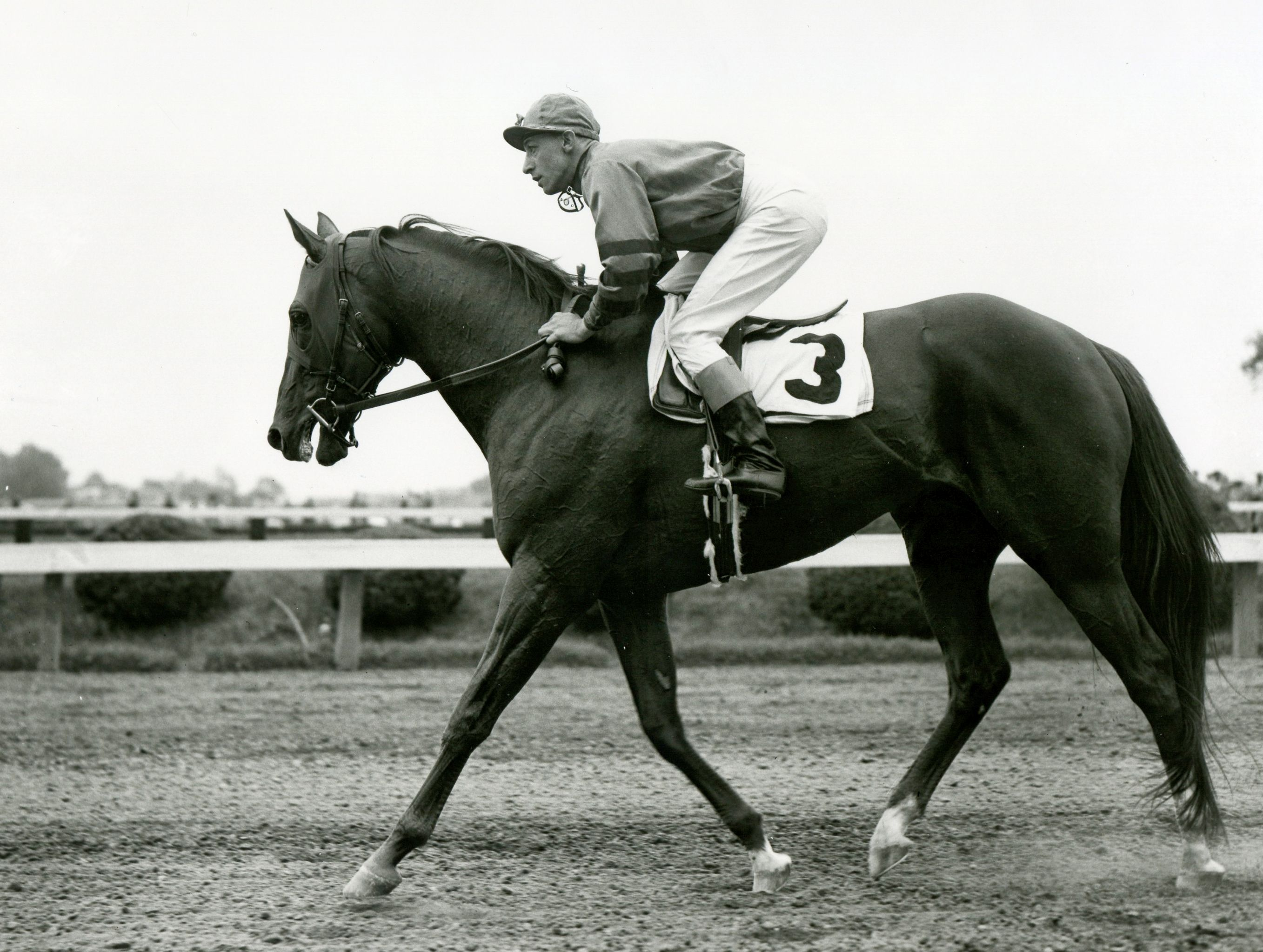 Whirlaway (Eddie Arcaro up) at Pimlico for the 1942 Dixie Handicap (Keeneland Library Morgan Collection/Museum Collection)