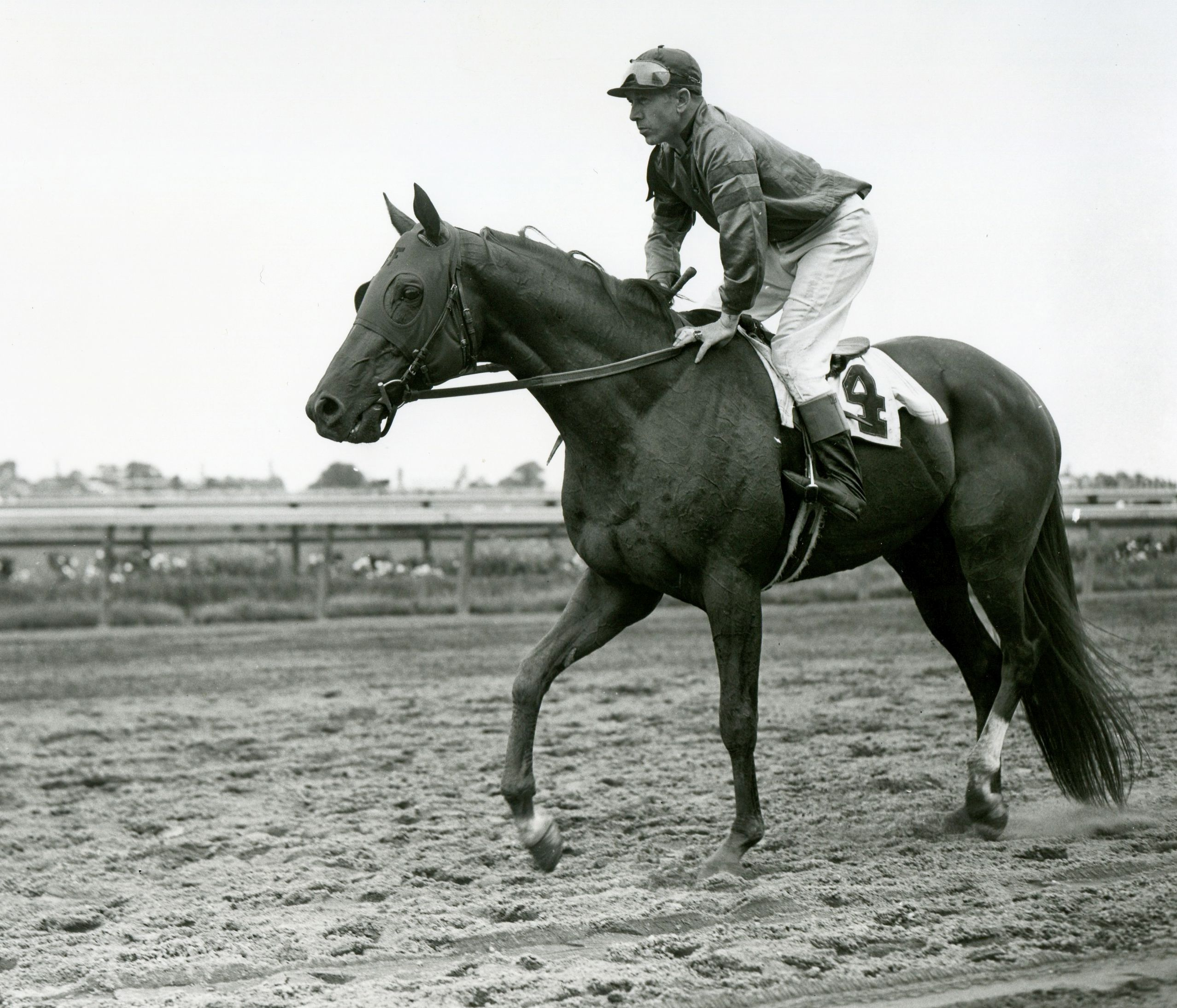 Whirlaway (George Woolf up) before the 1942 Brooklyn Handicap (Museum Collection)