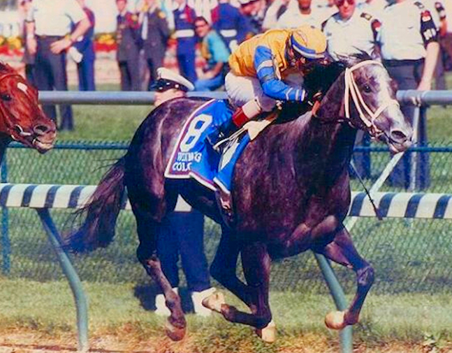 Winning Colors, 1988 Kentucky Derby (The BloodHorse)