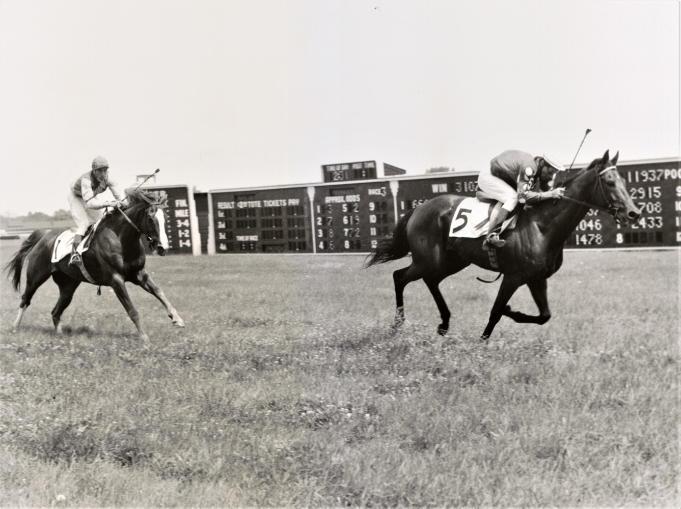 Joe Aitcheson and Tuscalee race to the finish in the 1968 Georgetown Steeplechase Handicap at Delaware Park (Keeneland Library Thoroughbred Times Collection)