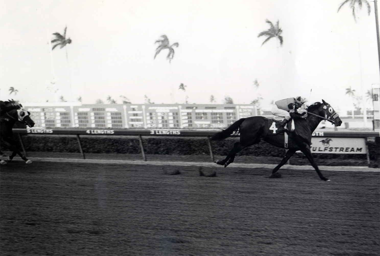 Walter Blum and Gun Bow winning the 1965 Donn Handicap at Gulfstream Park (Jim Raftery Turfotos/Museum Collection)