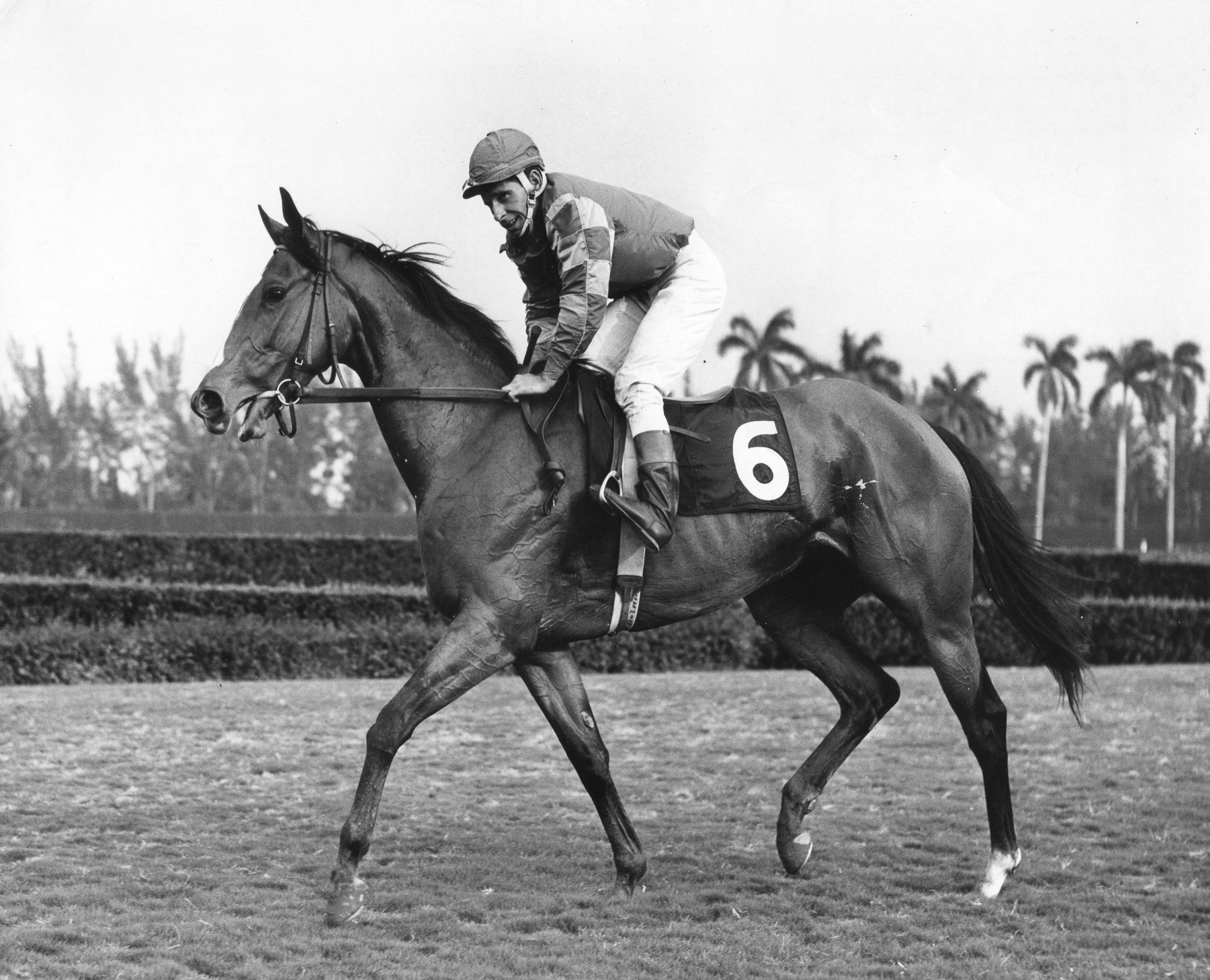 Bill Boland on Mac's Sparkler in the 1967 Black Helen at Hialeah Park (Jim Raftery Turfotos/Museum Collection)