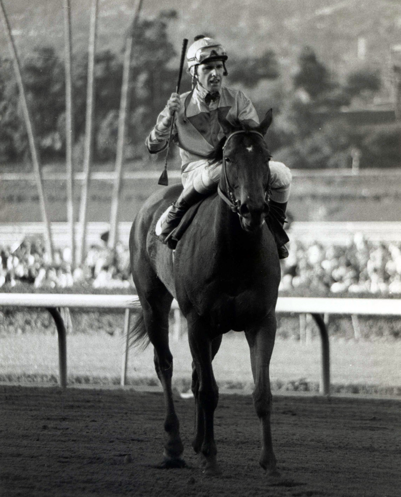 Eddie Delahoussaye and Bold 'n Determined after winning the 1980 Pasadena Stakes at Santa Anita (Bill Mochon/Museum Collection)