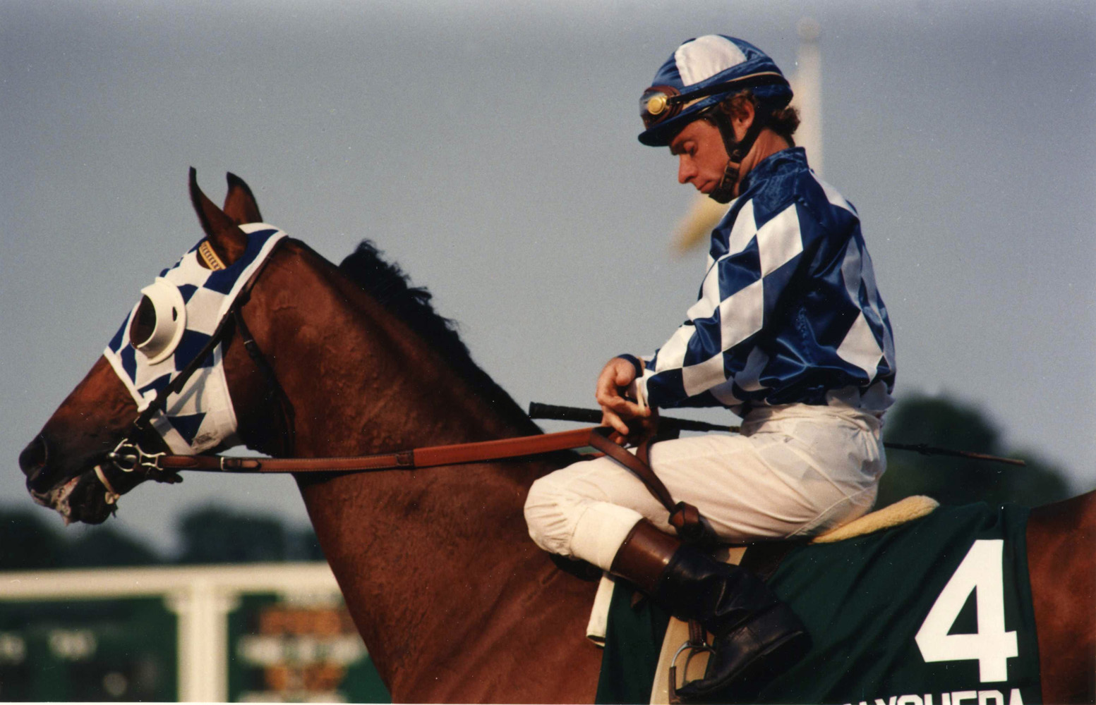 Chris McCarron and Alysheba at the 1987 Haskell Invitational at Monmouth Park (Barbara D. Livingston/Museum Collection)