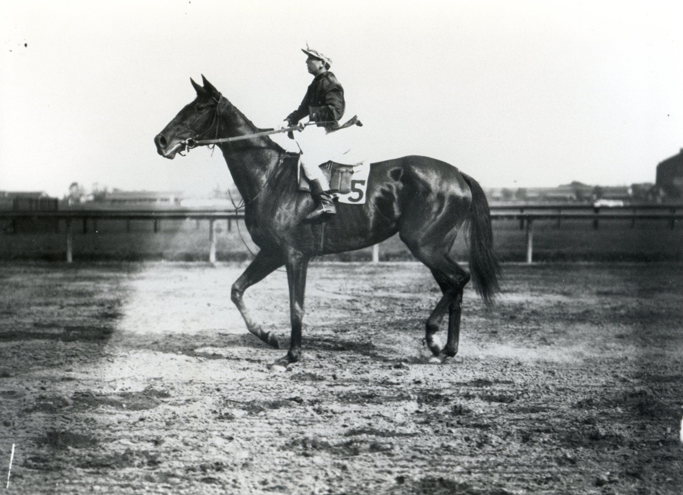 Walter Miller and Whimsical (Keeneland Library Cook Collection/Museum Collection)
