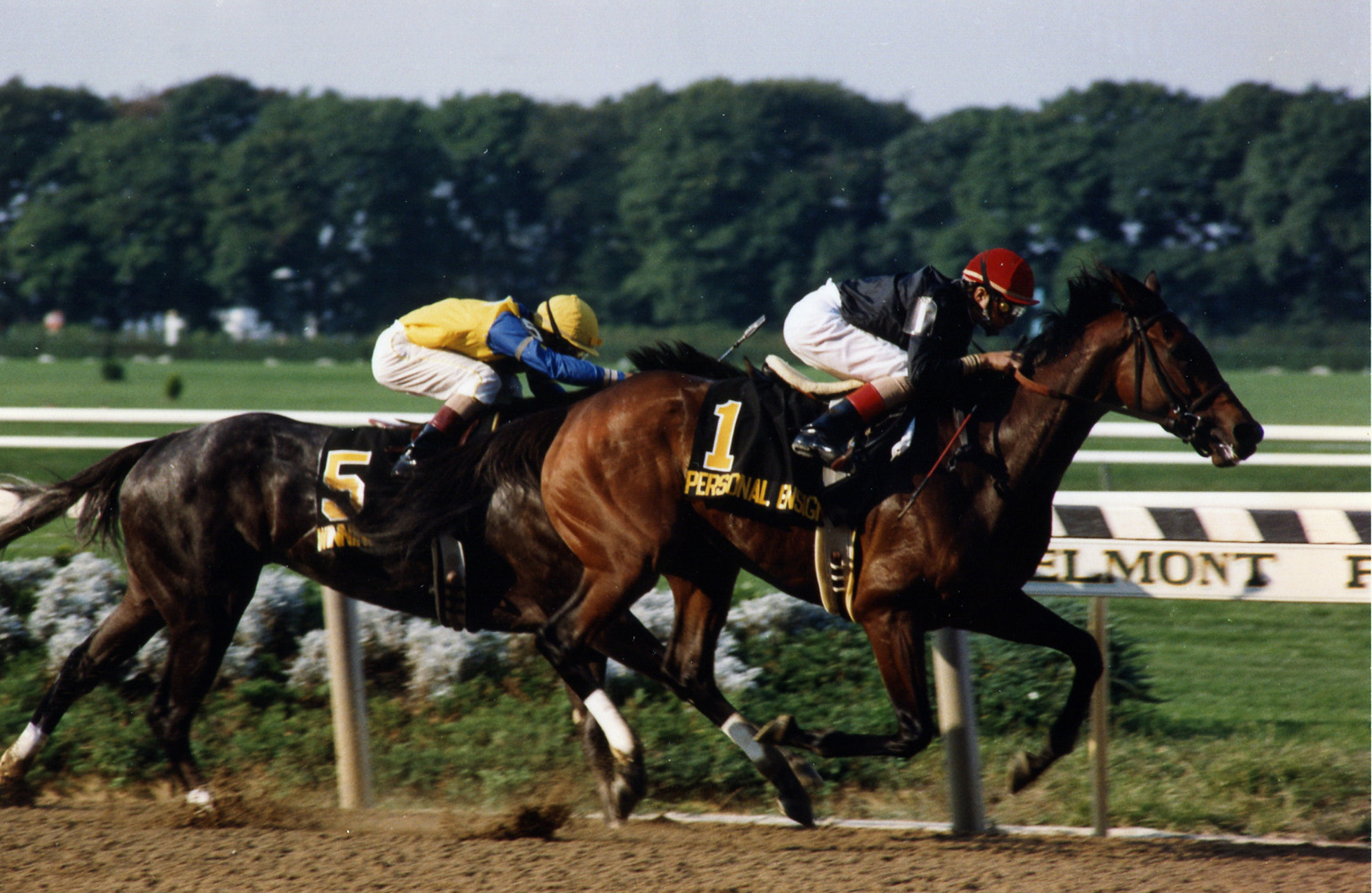 Randy Romero and Personal Ensign winning the 1988 Maskette at Belmont Park (Barbara D. Livingston/Museum Collection)