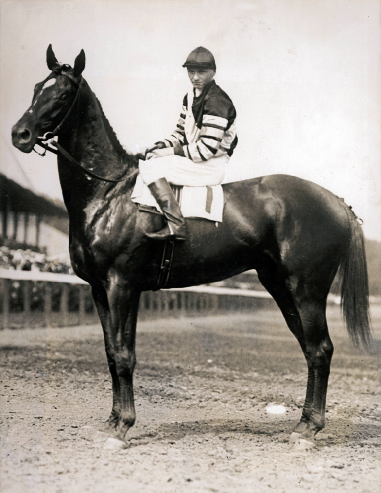 Earl Sande and Man o' War in the winner's circle for the 1920 Miller Memorial at Saratoga (Bert Morgan/Museum Collection)