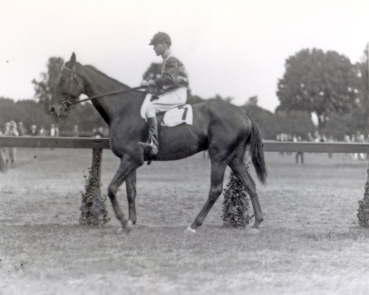 Bayard Tuckerman, Jr. (Keeneland Library Cook Collection/Museum Collection)