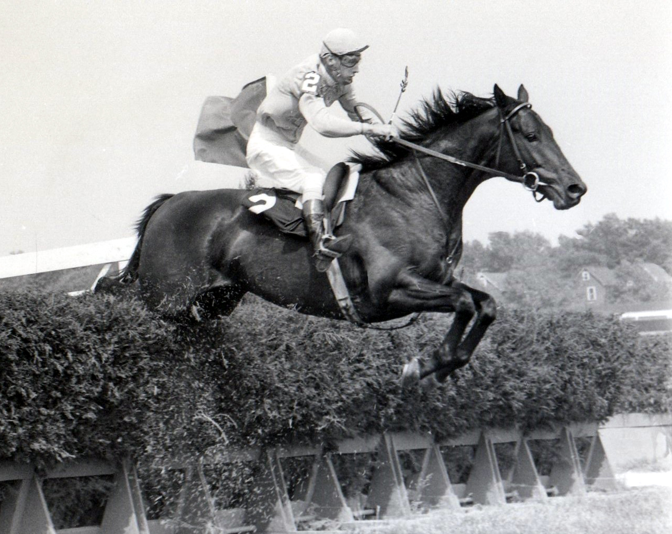 Tommy Walsh and Mako in the 1966 Meadowbrook Steeplechase Handicap during the Belmont at Aqueduct meet (NYRA/Museum Collection)
