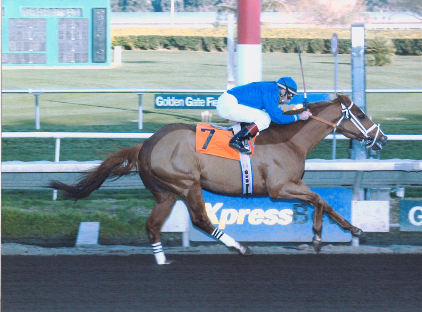 Russell Baze winning his 8,834th career race aboard Hollow Memories to surpass Bill Shoemaker and reach 2nd place on the all-time wins list for jockeys (Golden Gate Fields Photo/Museum Collection)