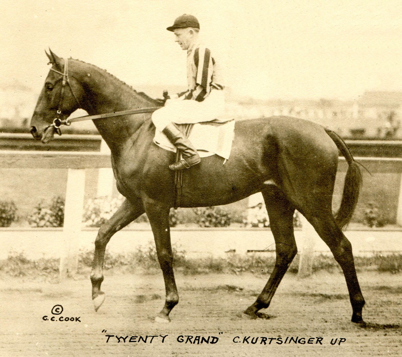 The 1931 Jockey Club Gold Cup, won by Twenty Grand (Charles Kurtsinger up)  (C. C. Cook/Museum Collection)