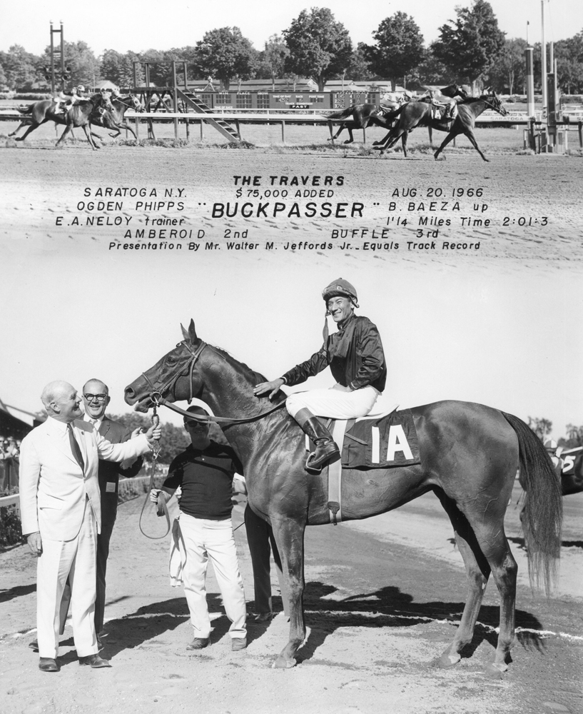 Win composite photograph for the 1966 Travers Stakes at Saratoga, won by Buckpasser (owned by Ogden Phipps) (NYRA/Museum Collection)