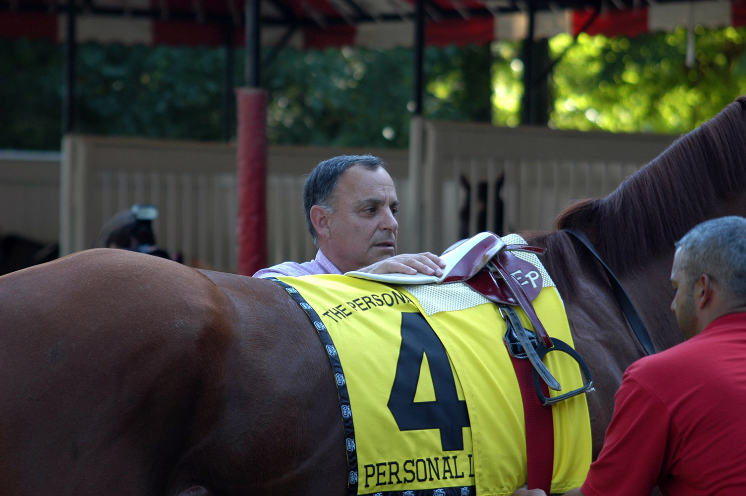 Bobby Frankel saddling in the Saratoga Paddock, August 2005 (Museum Collection)