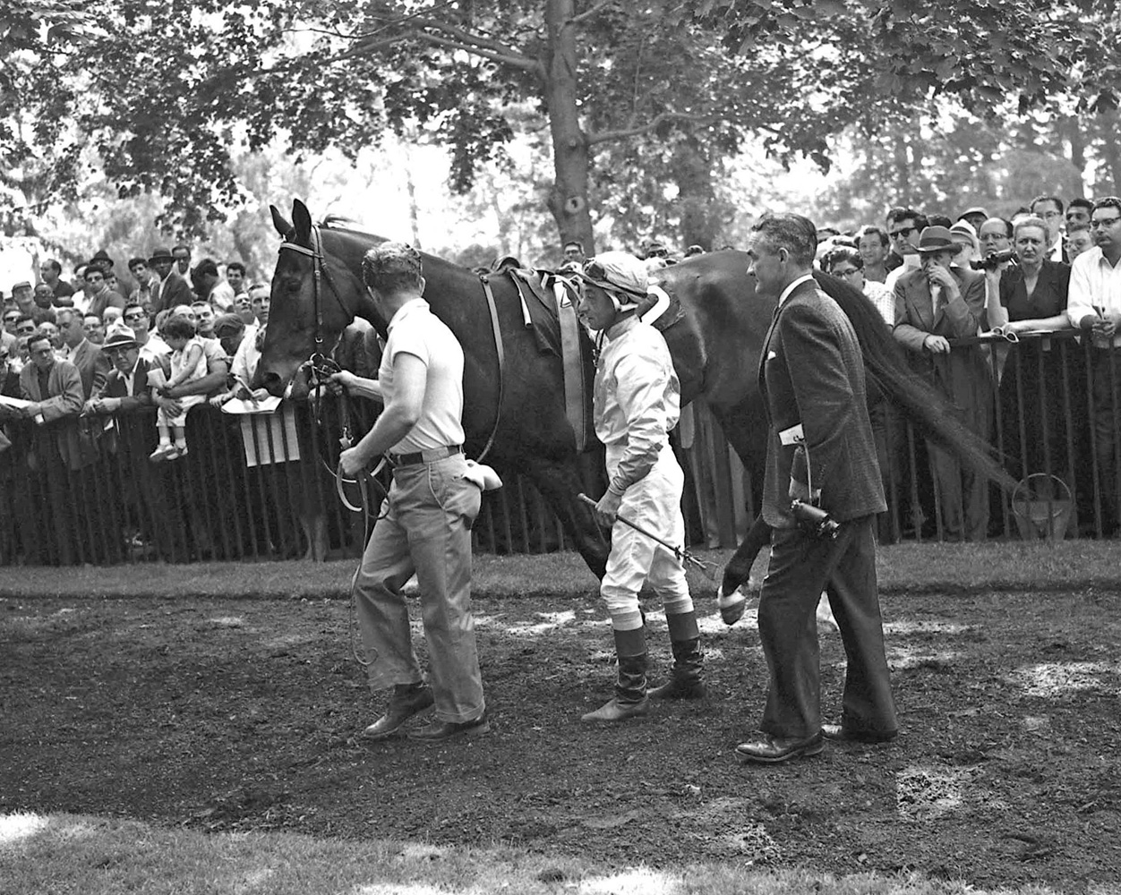 Eddie Arcaro and Carl Hanford greet Kelso in the Belmont paddock before the 1961 Whitney (Keeneland Library Morgan Collection)