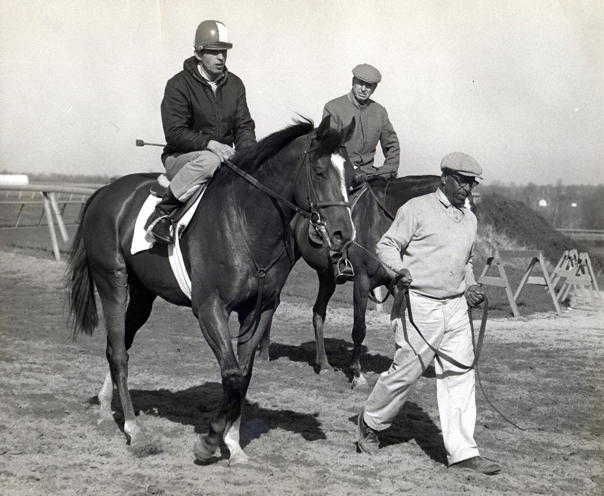 Horatio Luro (on horseback in background) joining Northern Dancer during training hours, April 1964 (Museum Collection)