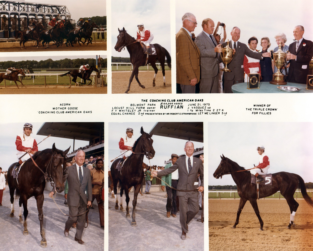 Win composite photograph from the 1975 Coaching Club American Oaks at Belmont, won by Ruffian (Jacinto Vasquez up), trained by Frank Whiteley, Jr. (NYRA/Museum Collection)